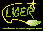 LOGO_LIGER_VECTO